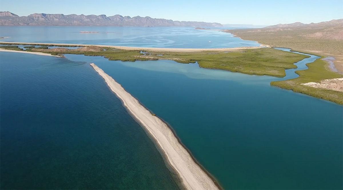 Modifican NOM que determina el procedimiento para establecer zonas de refugio para los recursos pesqueros