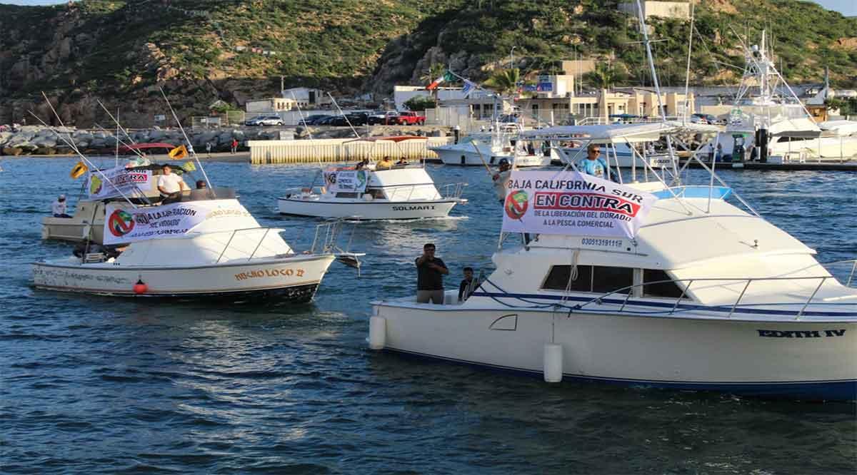 Sería un golpe al sector turístico y las familias que dependen de ello abrir a la pesca comercial el dorado