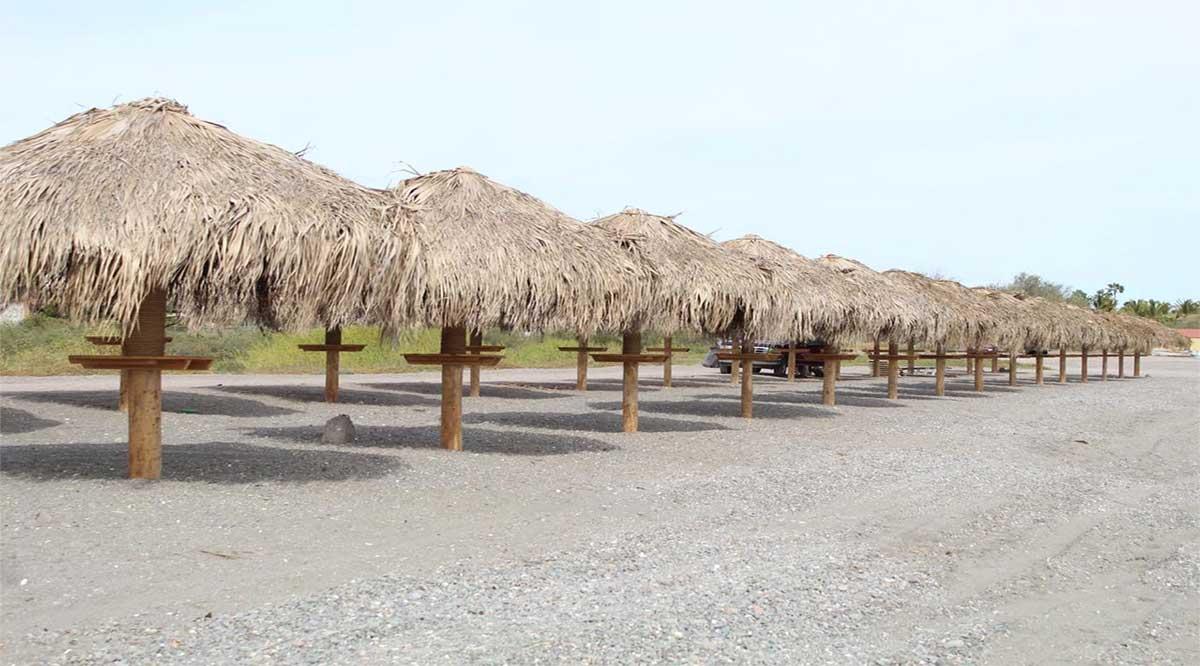 Instalan 30 palapas en Loreto en la playa La Negrita