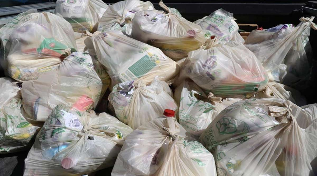 Se han entregado 11 mil despensas en Mulegé