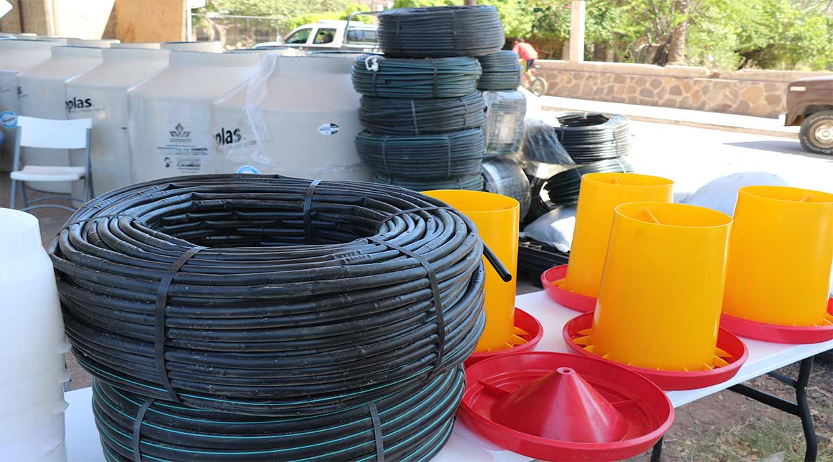 Entregarán en Mulegé 71 módulos de riego por goteo para huertos de traspatio integrado