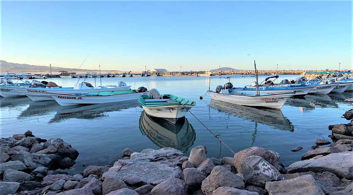 Reactivan actividades turísticas náuticas y terrestres en Loreto