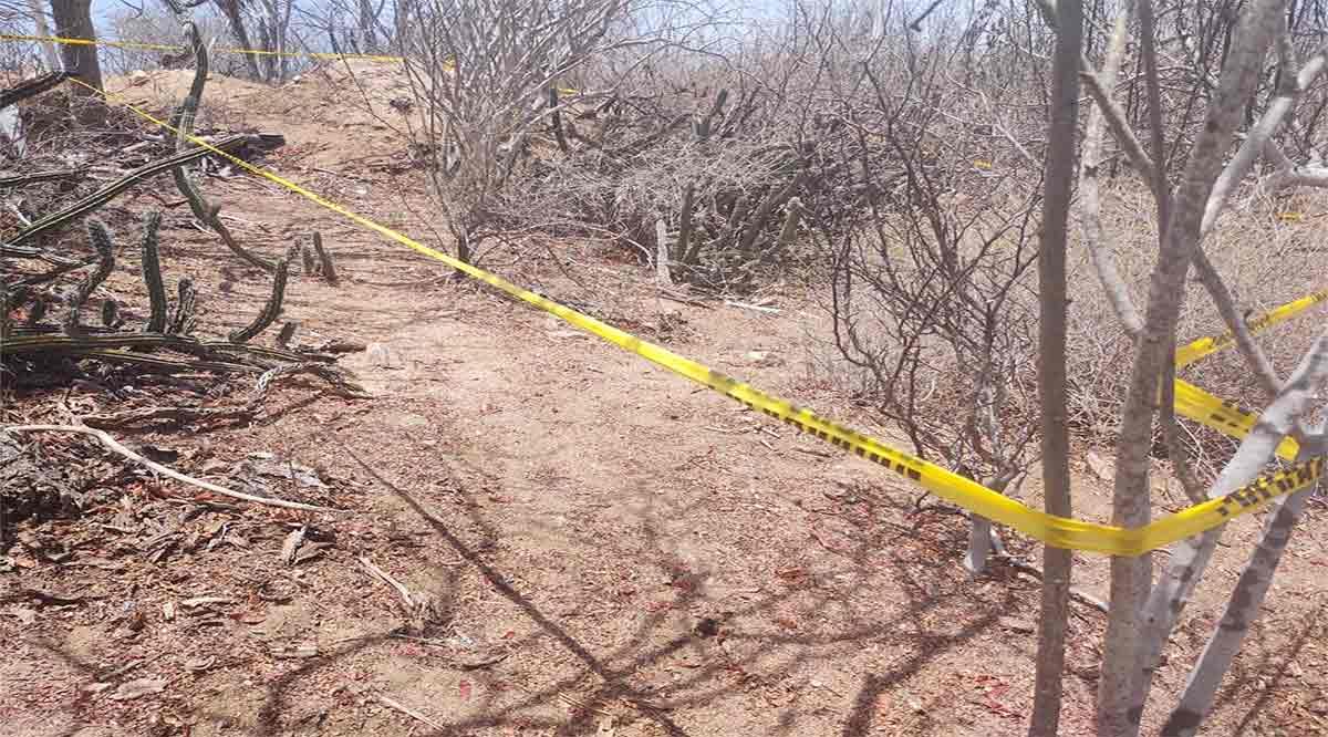 Hallan posibles restos humanos las Comisiones Estatal y Nacional de Búsqueda en Los Cabos