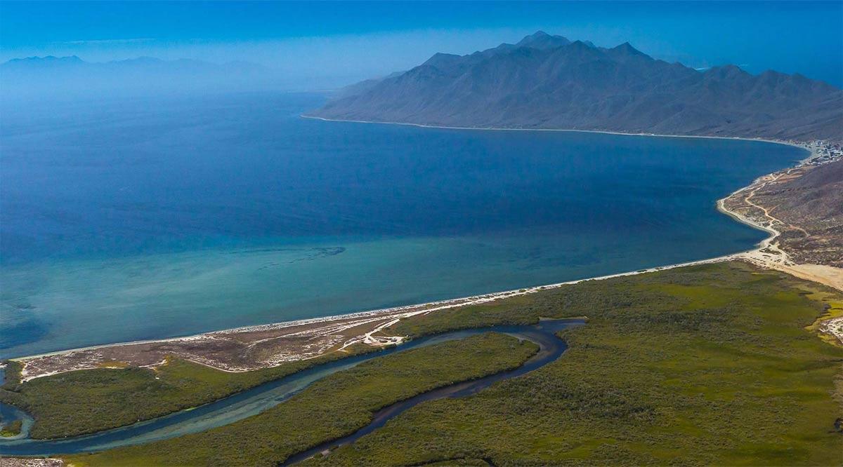 Certificarán el agua de las Bahías Magdalena y Almejas