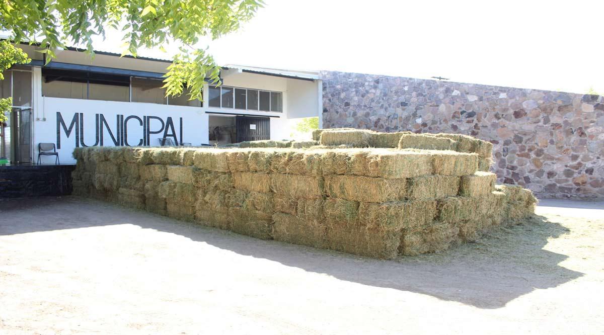 Adquiere Ayuntamiento de Loreto 425 pacas de alfalfa para apoyo a los ganaderos