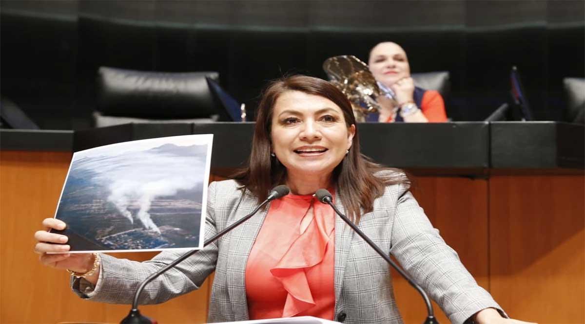 Buscará la Alcaldía de Los Cabos la senadora Lupita Saldaña
