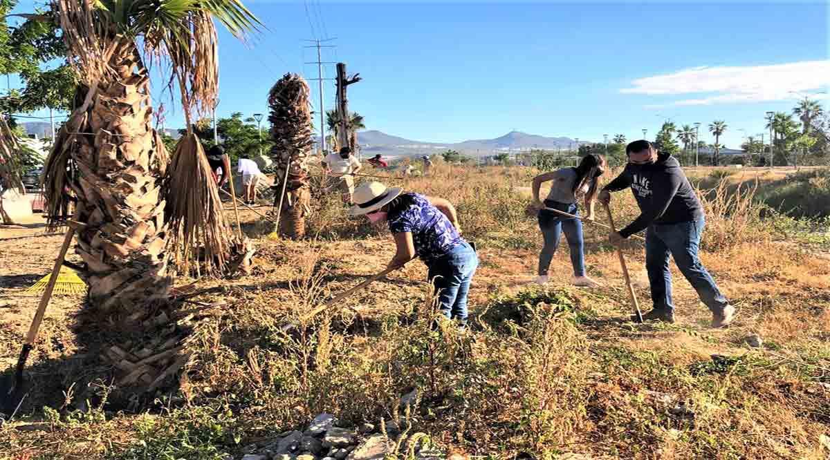 Se suman ciudadanos a la jornada de limpieza del parque lineal de CSL