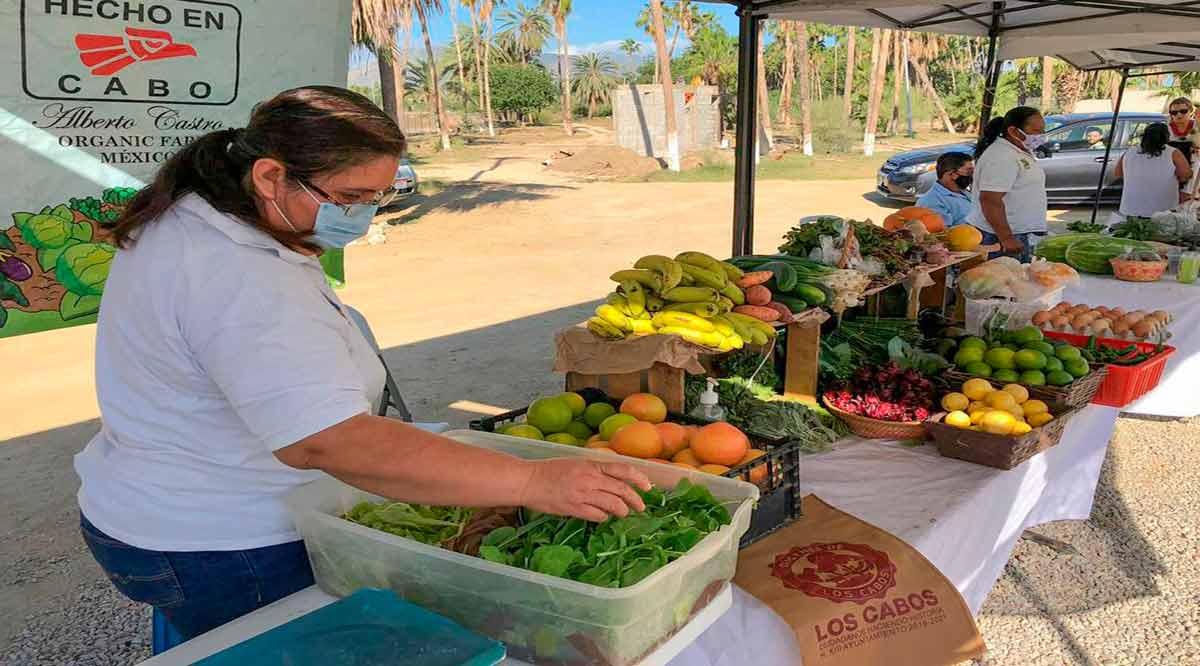 Promueven el mercado regional en Los Cabos