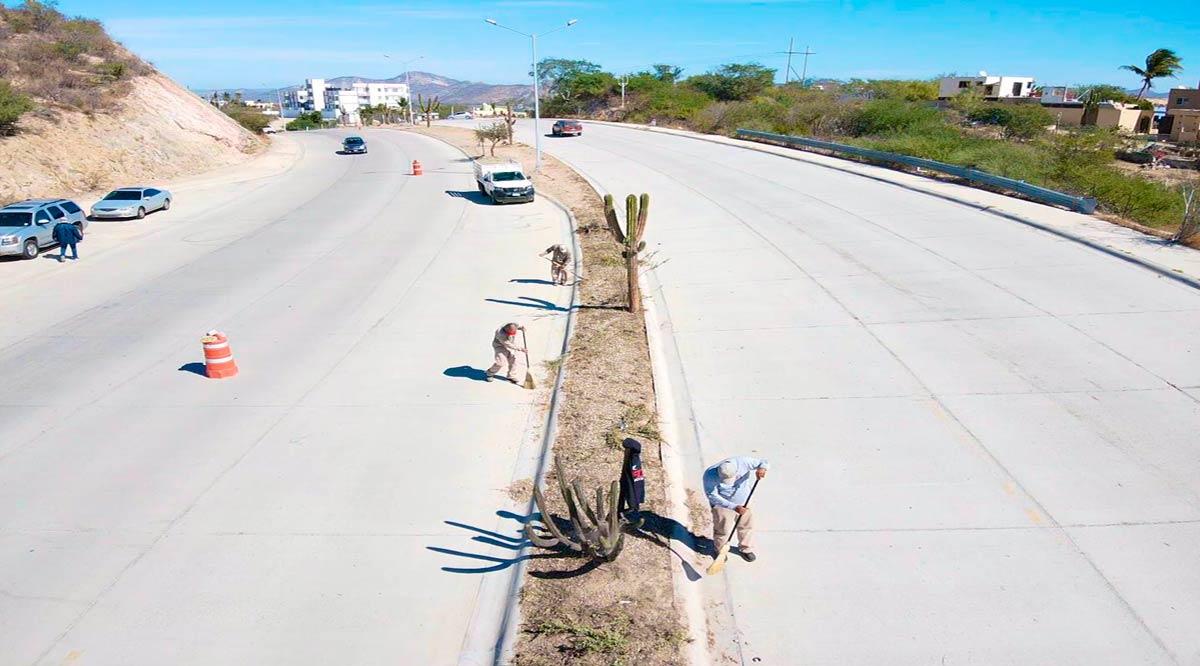 Rehabilitan y reforestan camellón de avenida Forjadores en SJC