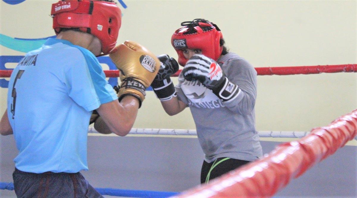 Trabajan seleccionados de boxeo de BCS con la mira en los Panamericanos de la Juventud