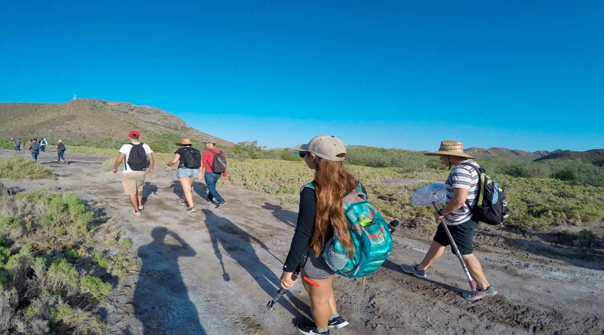 Han certificado más de 300 guías de turistas locales la UABCS y el gobierno de BCS