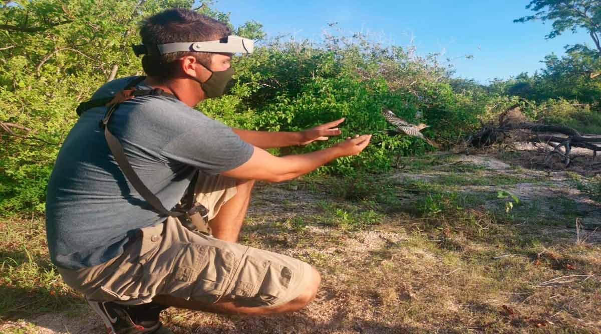 Recibe estudiante de la UABCS beca para certificarse como anillador científico de aves