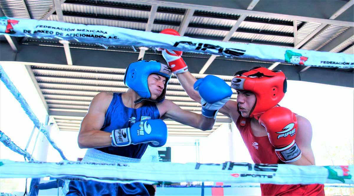 Parten 21 boxeadores de BCS a la etapa Regional de los Nacionales Conade