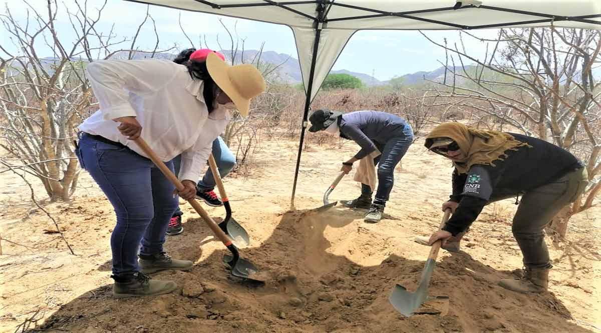 Van autoridades y Colectivos de Búsqueda de Personas por su localización en Los Cabos