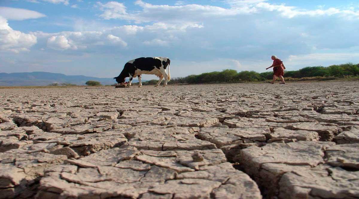 Solicitan en el Congreso se declare zona de emergencia BCS para atender la sequía
