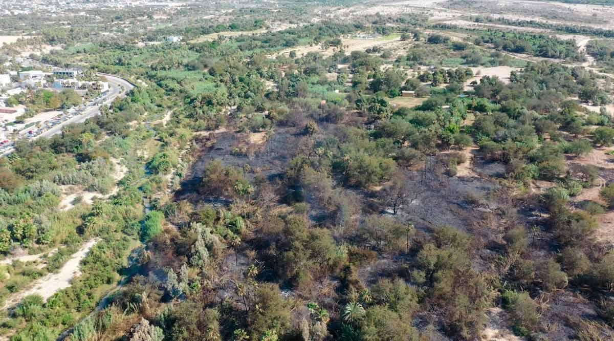 Durante 5 horas 80 personas trabajaron para apagar el segundo incendio en el Estero de SJC