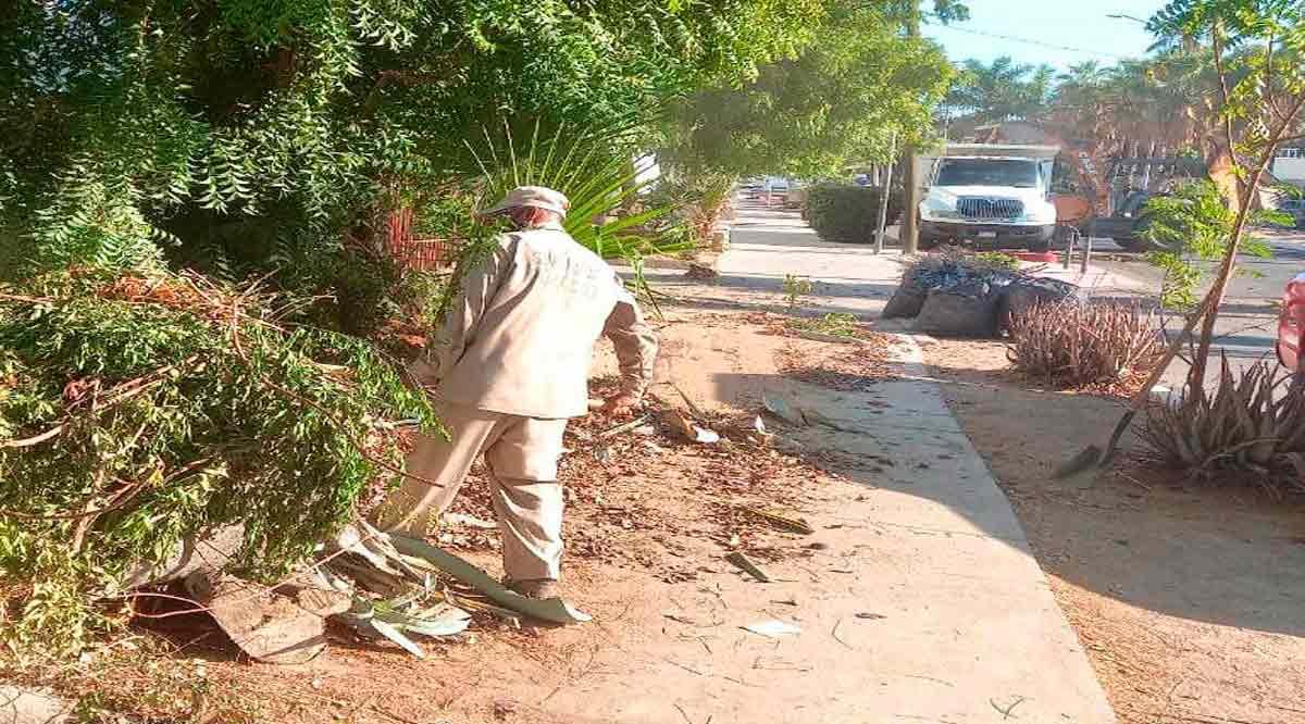 Limpian escuelas en Los Cabos ante eventual regreso a clases presenciales