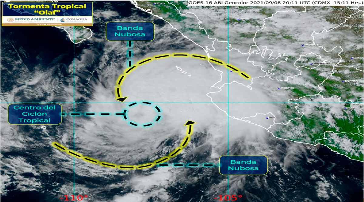 """Se ubica la tormenta tropical """"Olaf"""" a 450 kilómetros de CSL"""