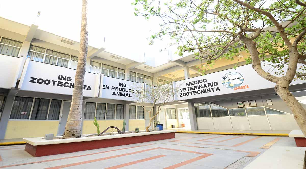 Reinicia la UABCS con actividades presenciales en octubre