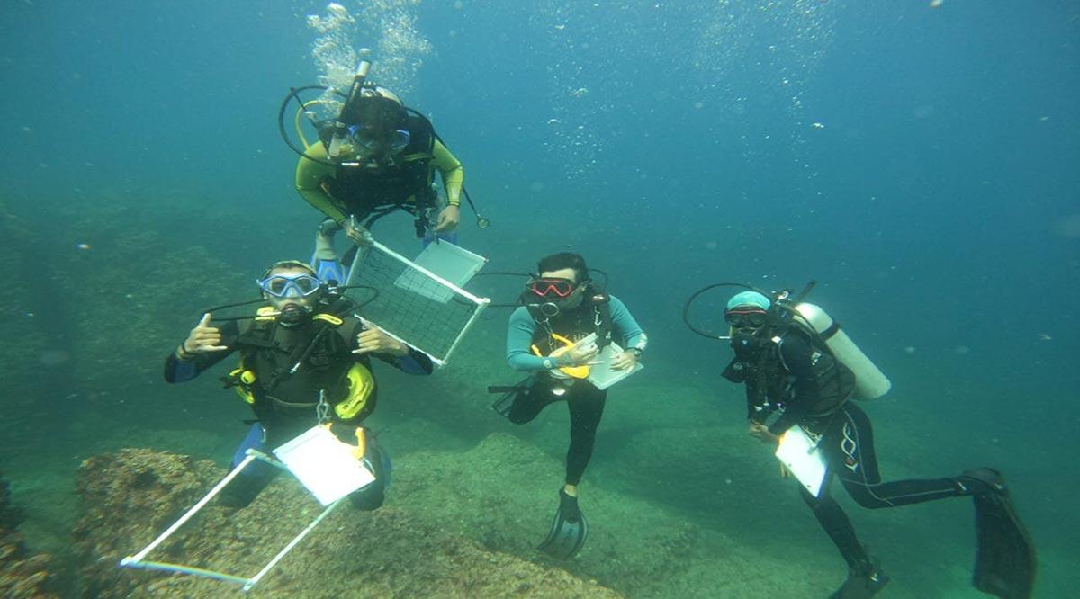 Abre UABCS proceso de selección para posgrado en Ciencias Marinas y Costeras