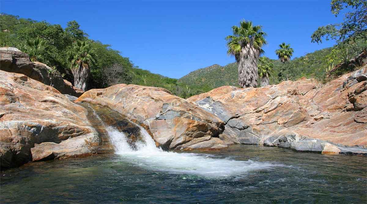 Fortalecerá el proyecto Kuxatur el desarrollo sustentable y conservación de Sierra La Laguna